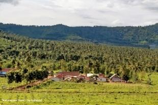 View-2-Malangsari